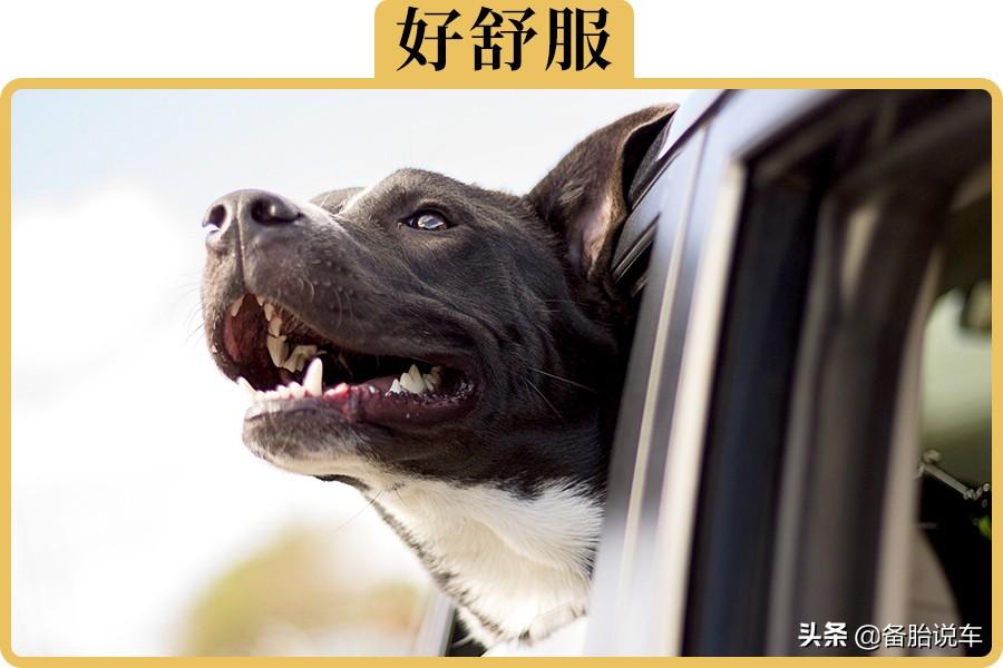 想要噪音小、換氣快,車窗應該怎么開?