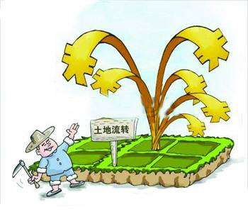 农民朋友如何通过土地致富呢?