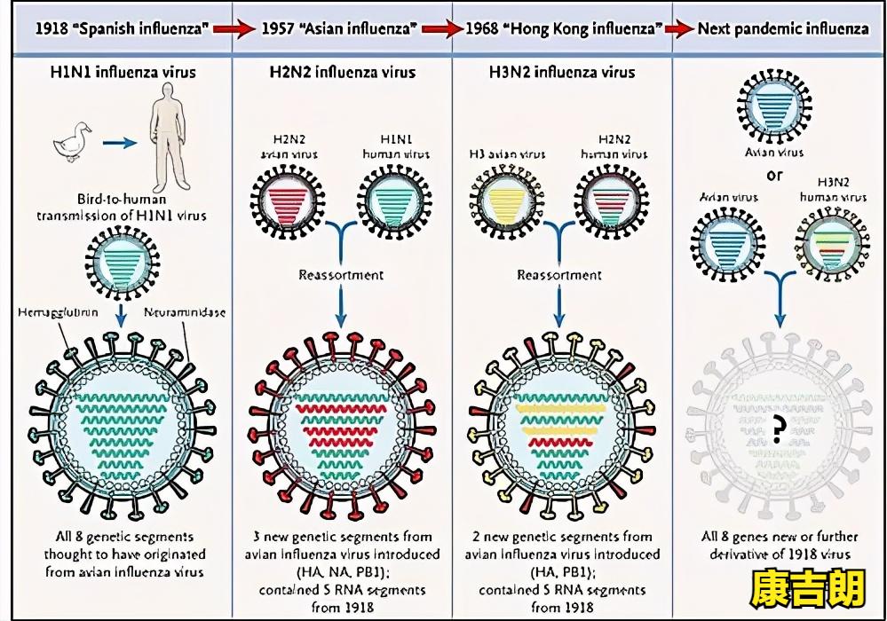 今天揭秘!康吉朗消毒喷雾剂对流感病毒有何作用?