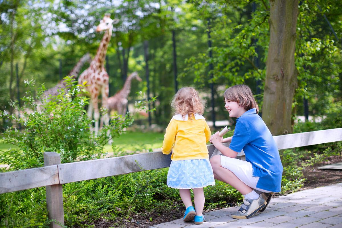 暑假去哪里玩兒?動物園是個好去處,一定要告訴孩子原則性問題