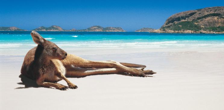 """国内三个利好消息,澳大利亚或将失去""""挽救""""经济的机会"""