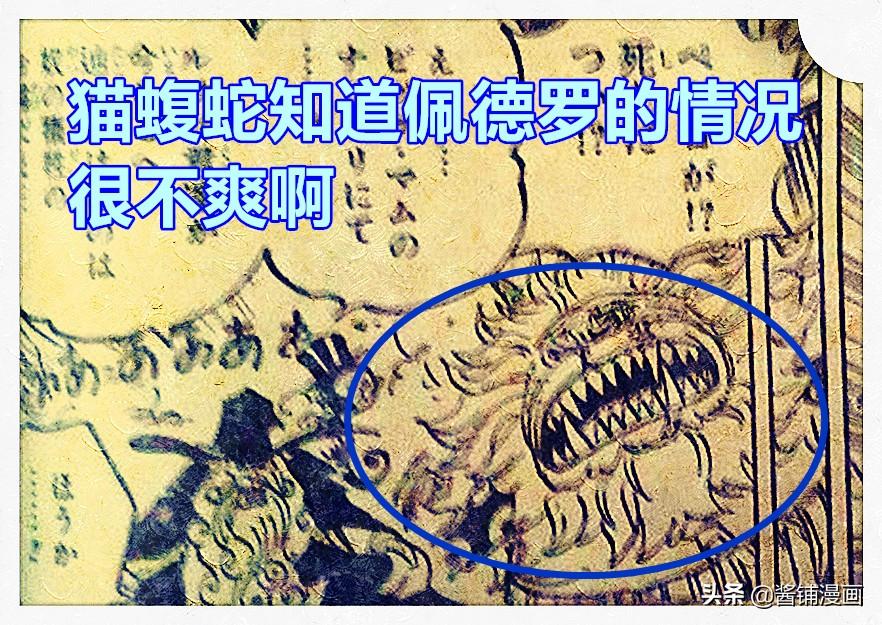 海賊王1012話,暴走的貓蝮蛇vs7億的佩羅斯佩羅,傳次郎行蹤成謎