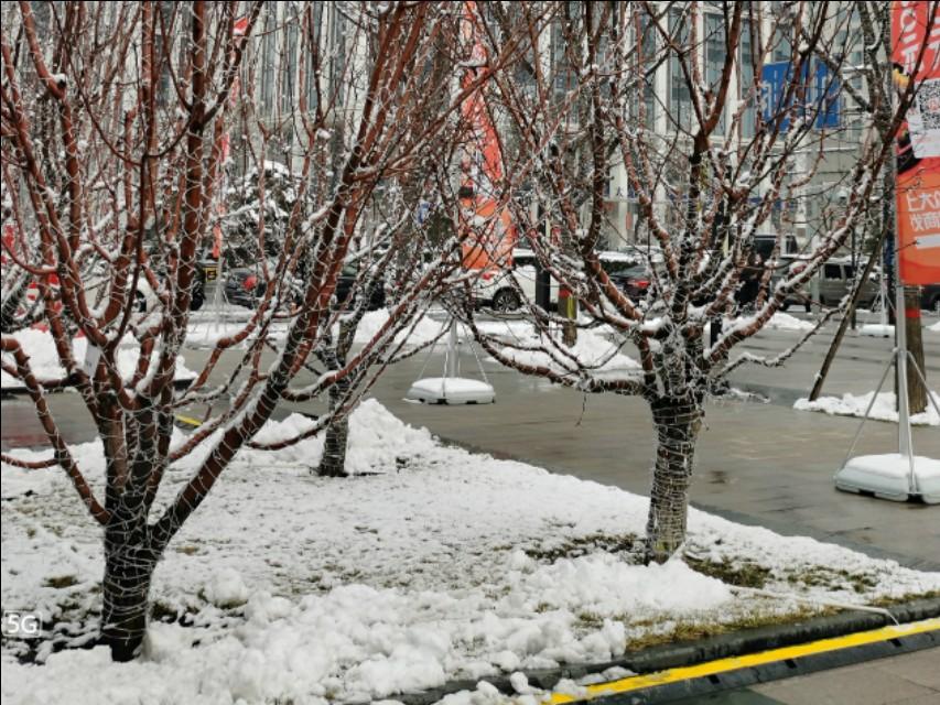 朋友圈摄影大赛开幕:华为nova6 5G教你拍出动人的北京初雪