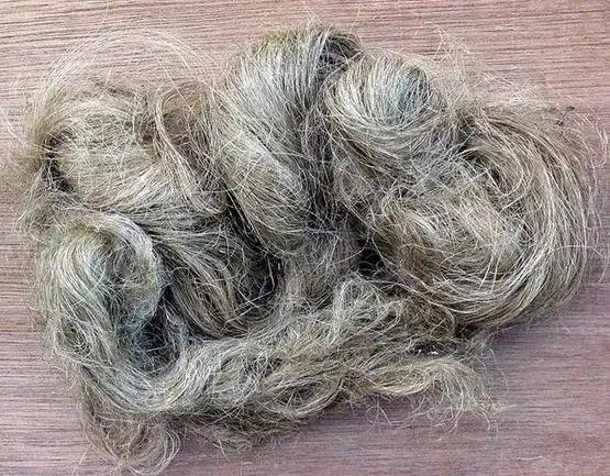 棉花传入之前,冬天穿什么?