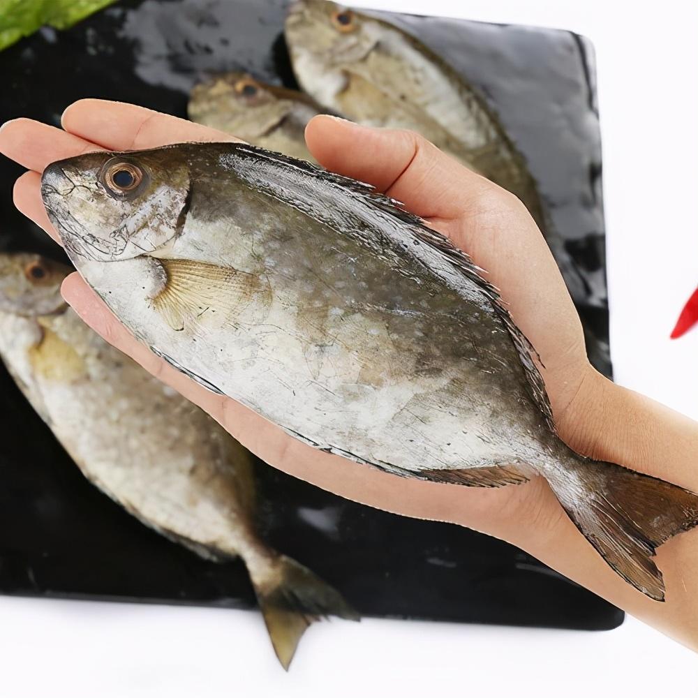 煎出的鱼不破皮不粘锅?很多人都不知道,1个诀窍,让你煎出好鱼 美食做法 第3张