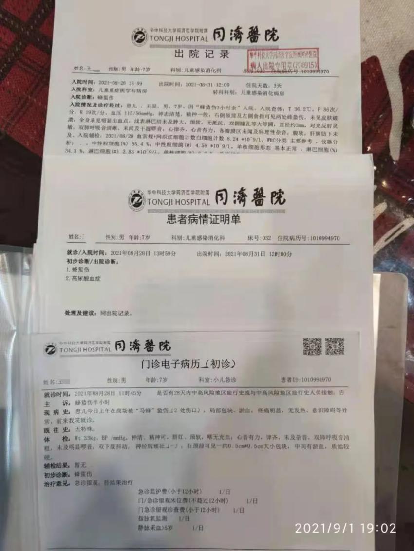 武汉一男童在永旺梦乐城被马蜂蜇进ICU