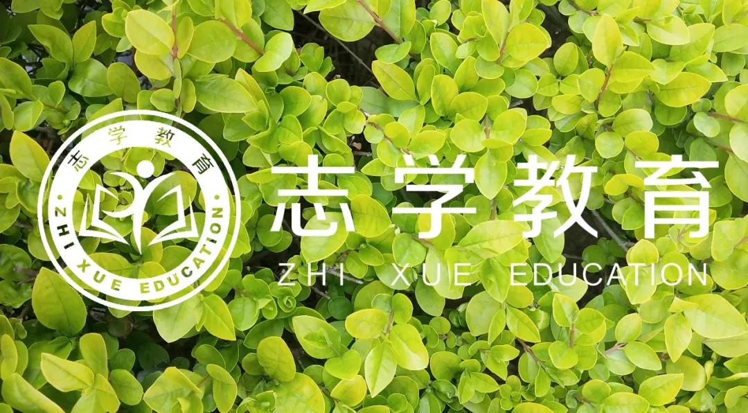 「名校梦·志学行」暑假20天,领先整3年