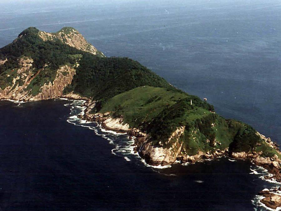 巴西蛇岛每平米1条蛇,岛上毒蛇比陆地近亲毒5倍,成为人类禁地
