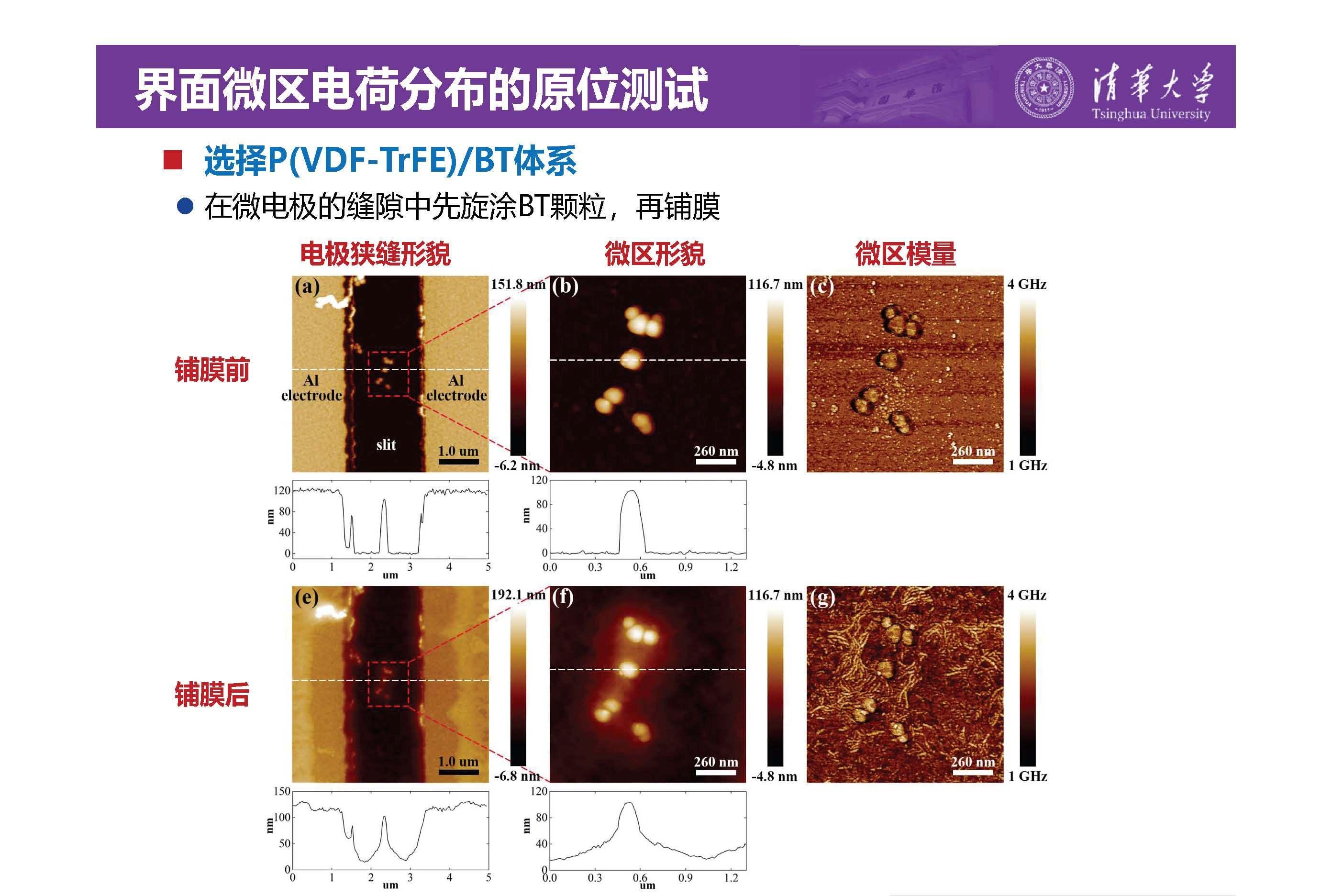 清华大学李琦副教授:介电纳米复合材料界面微区的原位测试技术
