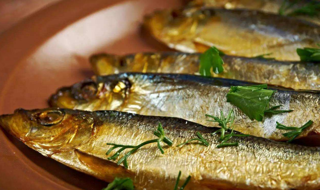 鲱鱼罐头那么臭,为何在欧洲还备受欢迎?原来还有那么多吃法