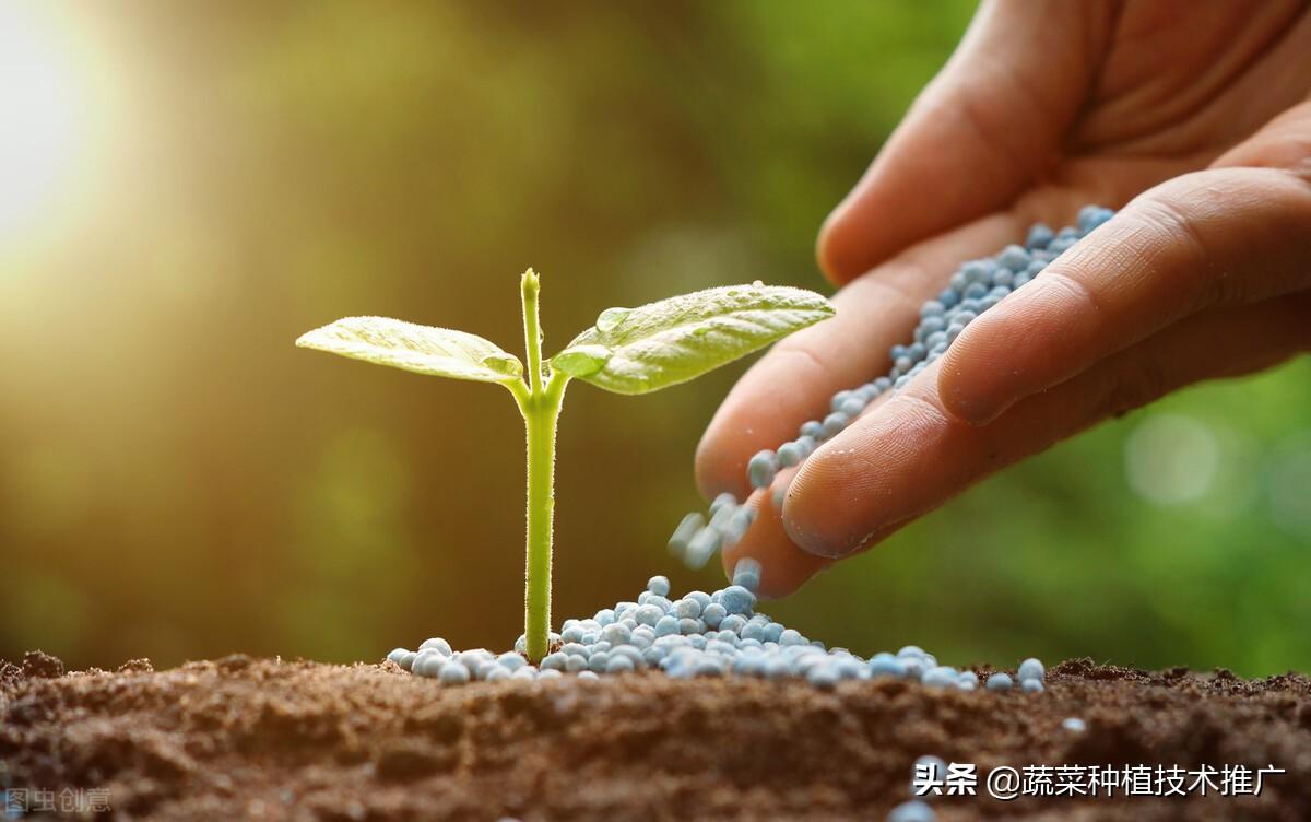 植树节—贡献力量、奉献绿色