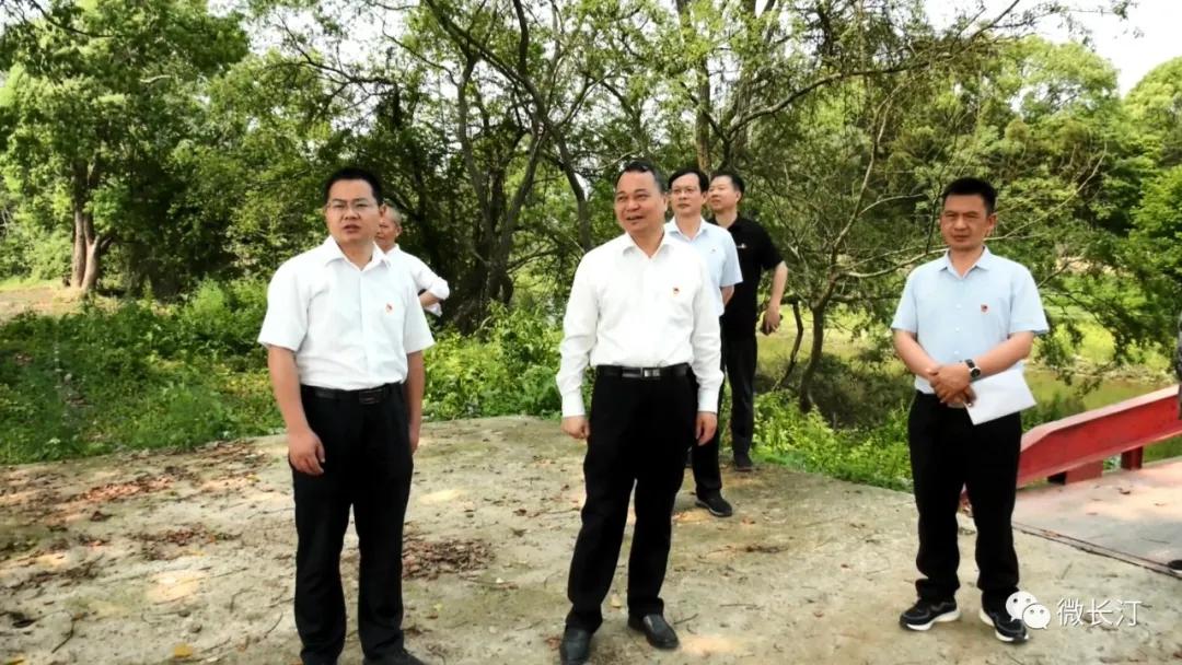 再学习 再调研 再落实丨长汀县委书记廖深洪到三洲镇调研