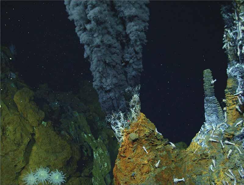 生命起源于何处?陨石中发现古微生物化石,地球形成前或已存在