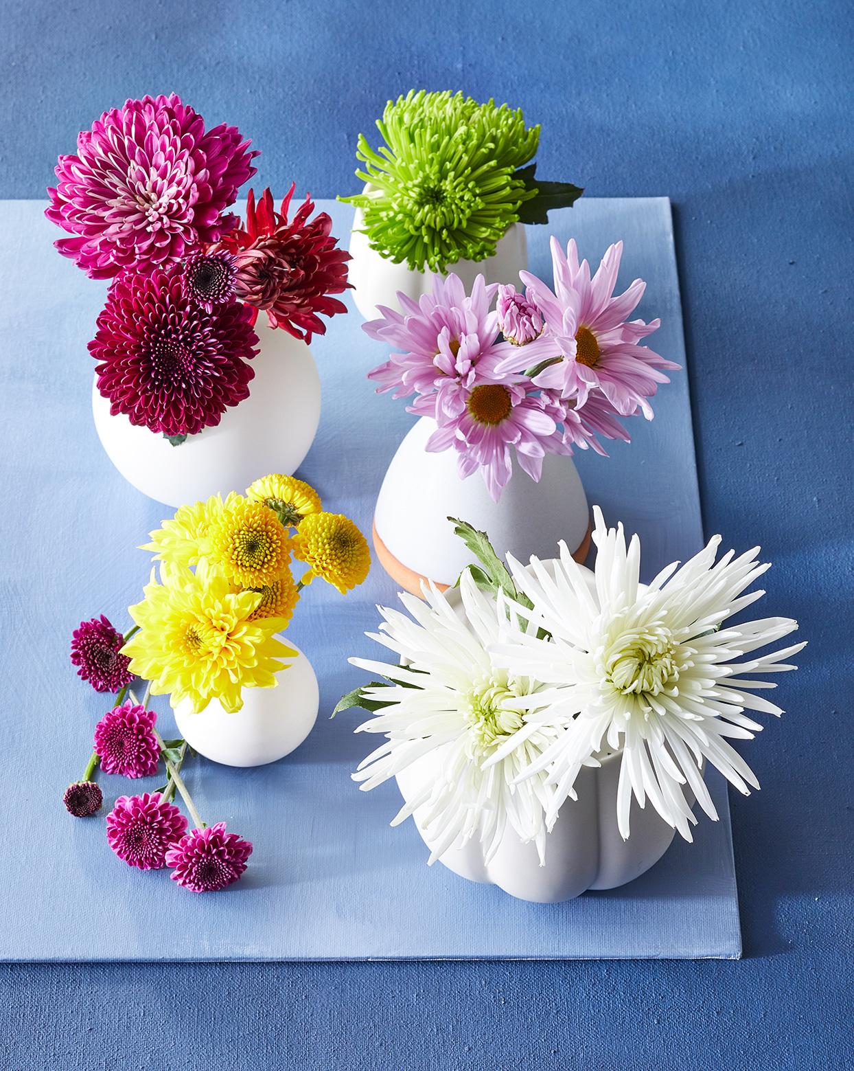 哪些花儿特别适合室内插花?来延续它们的灿烂吧
