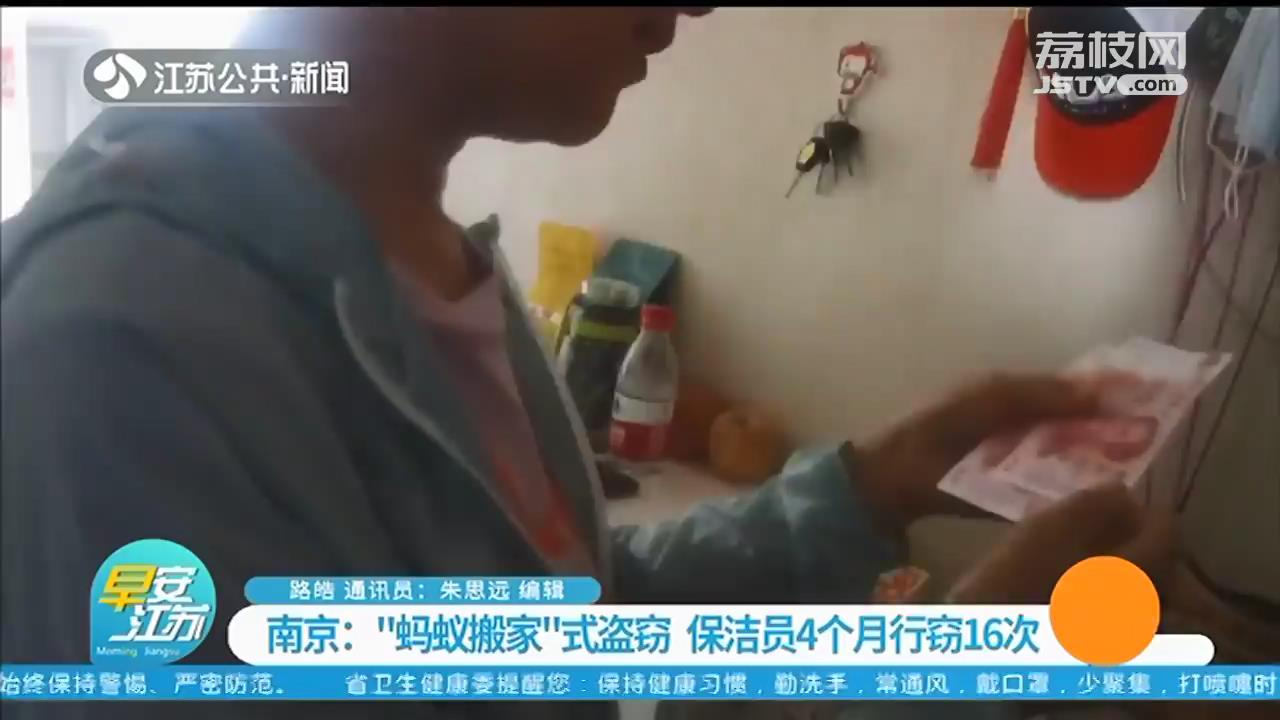 """""""蚂蚁搬家""""式盗窃 南京一保洁员4个月行窃16次"""
