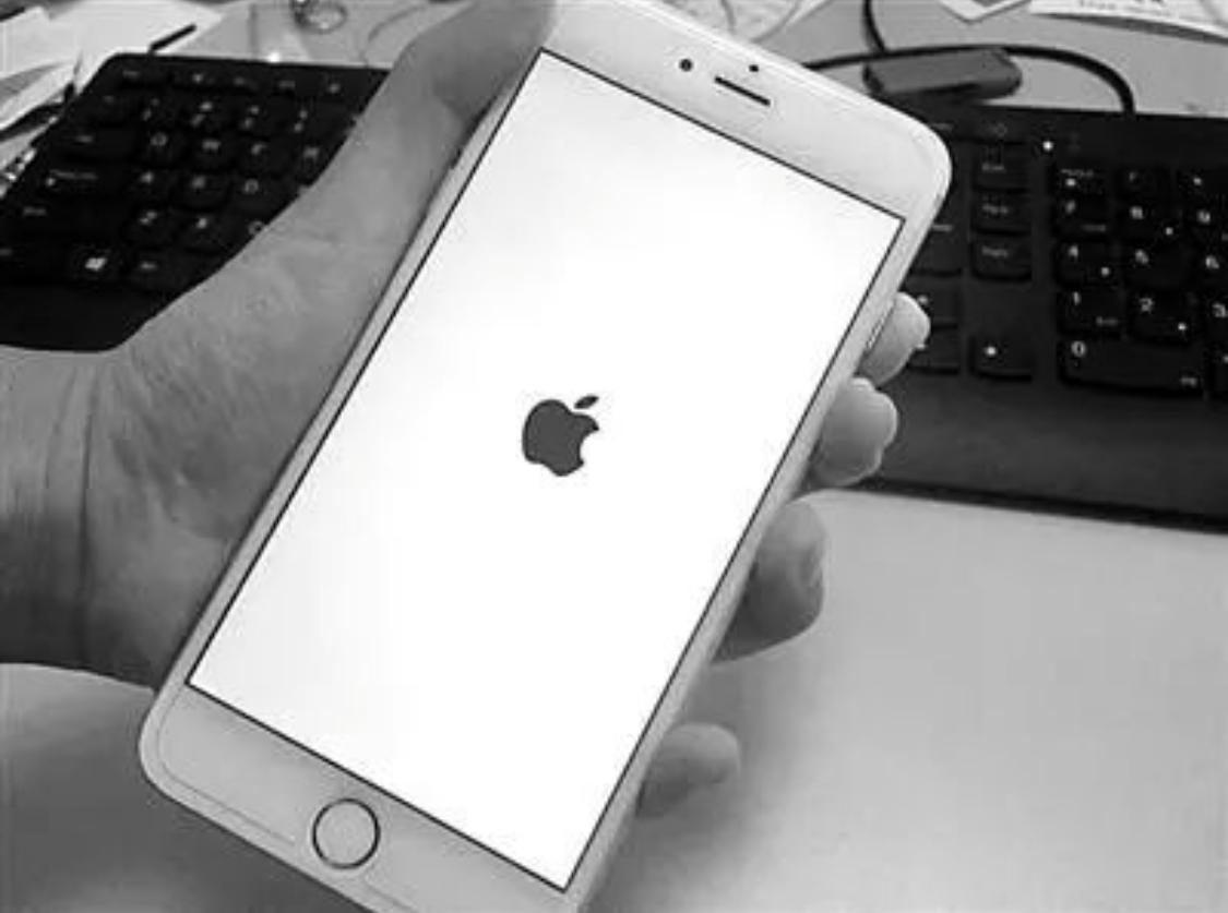 苹果手机无服务是什么原因(sim卡没坏但苹果手机无服务)