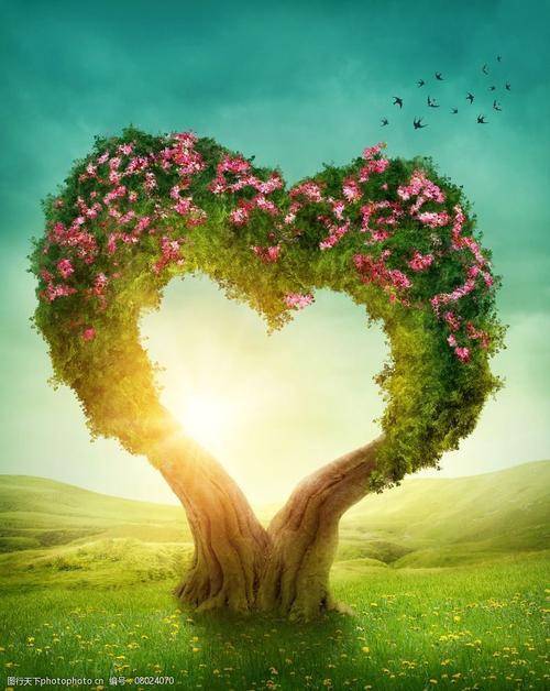 《爱心树》读后感400字图1