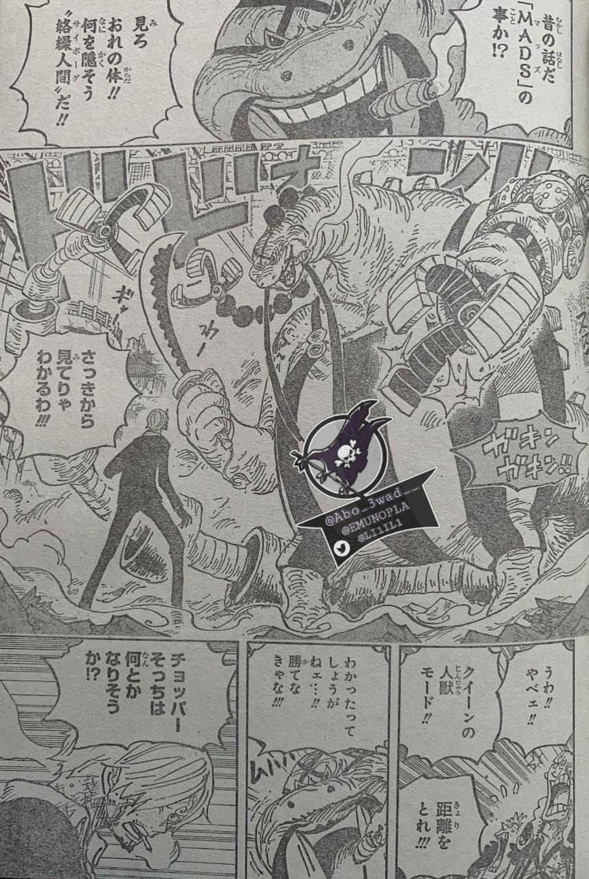 海賊王1017話超詳細全文情報翻譯!奎因和福茲弗過去的細節