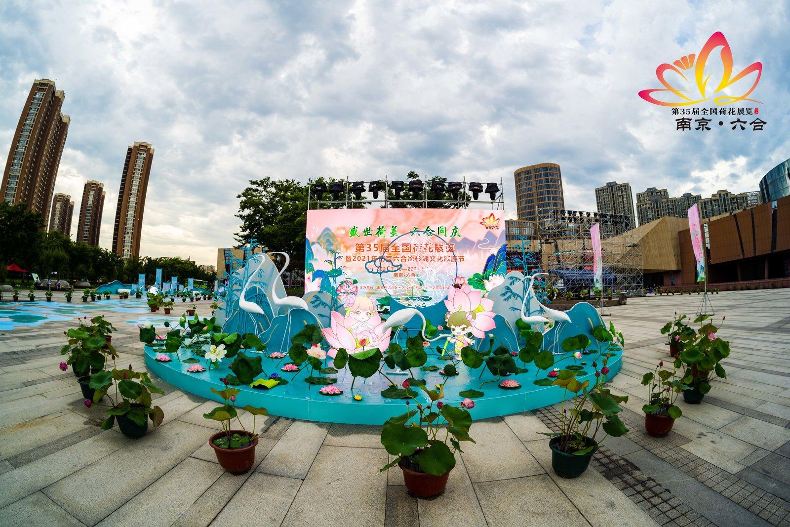 第35届全国荷花展览在六合盛大开幕