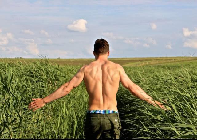 健身新人高效背部肌肉訓練動作,徒手3個動作幫高效刺激練好背肌