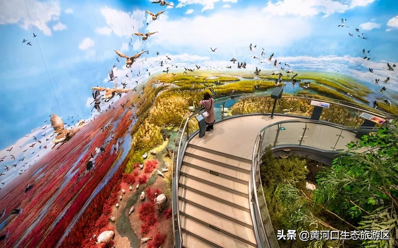 【黄河口生态旅游区】一图一美景