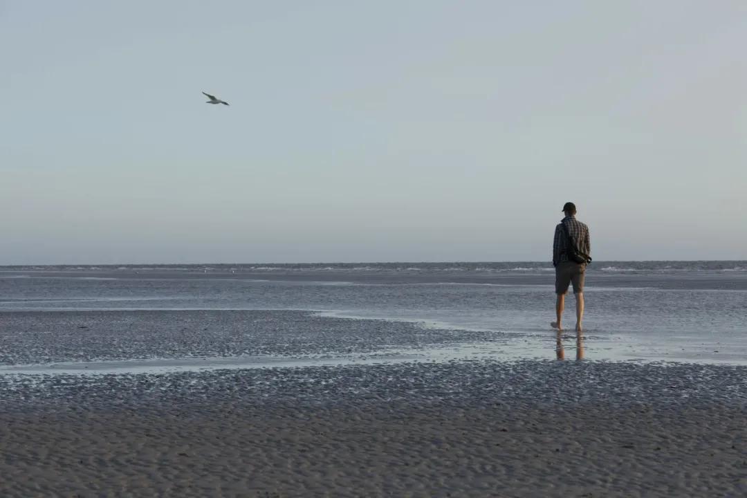 《瓦爾登湖》:一個人的強大,從獨來獨往開始