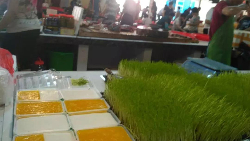 小小芽苗菜成为蔬菜市场上新的消费亮点