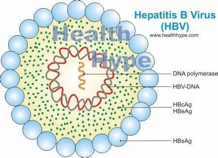 辟谣:长期吃护肝片,真能保护肝脏不发病吗?听听肝病医生怎么说