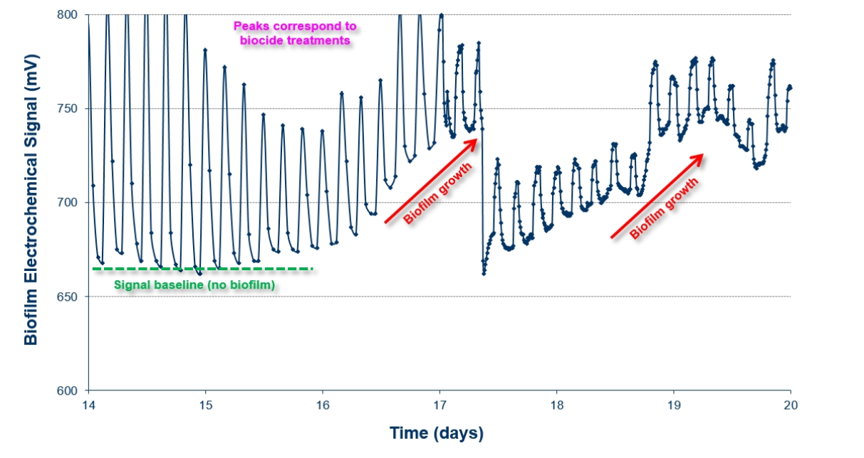 造紙行業中生物膜監測系統應用