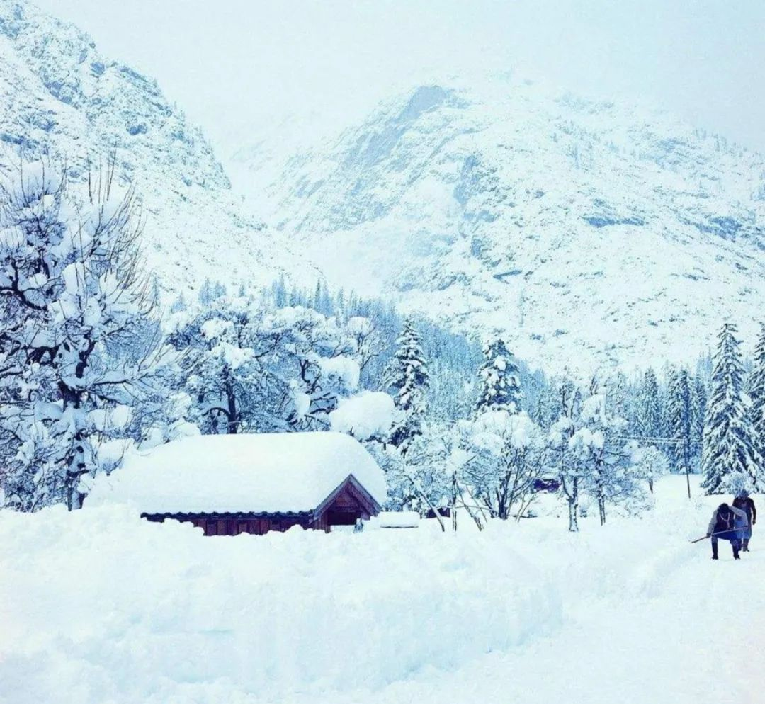 「诗词鉴赏」十五首古人对雪的诗词,有数不尽的浪漫!?