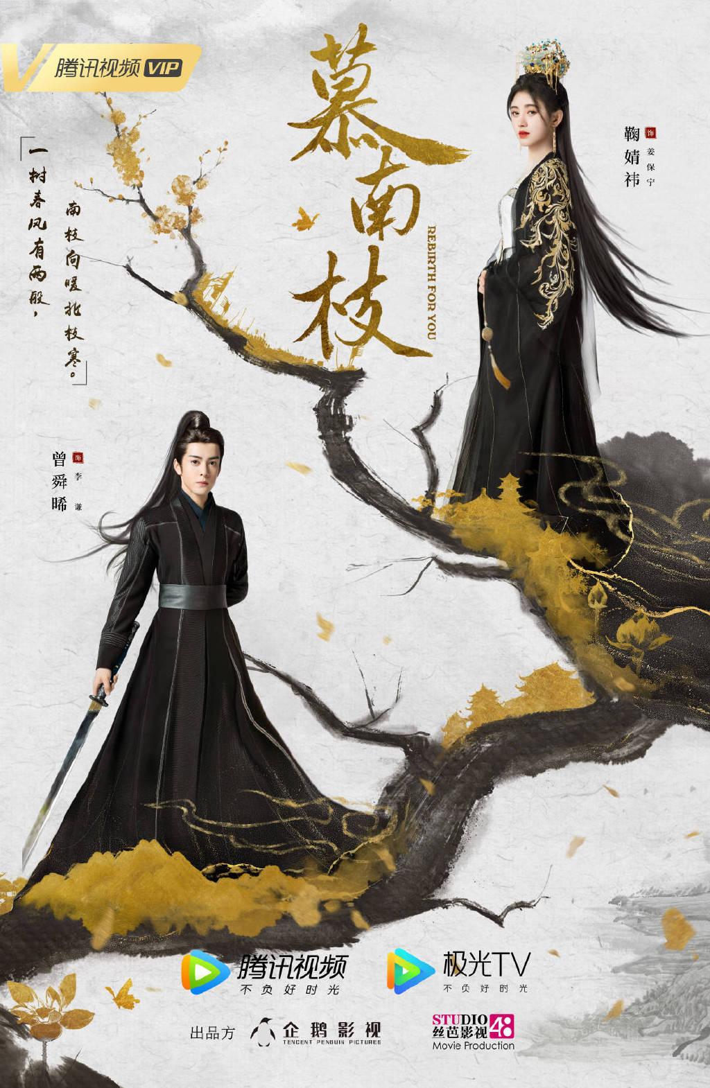 电视剧《慕南枝》官宣,男女主海报刚出来就被骂惨,粉丝:实惨