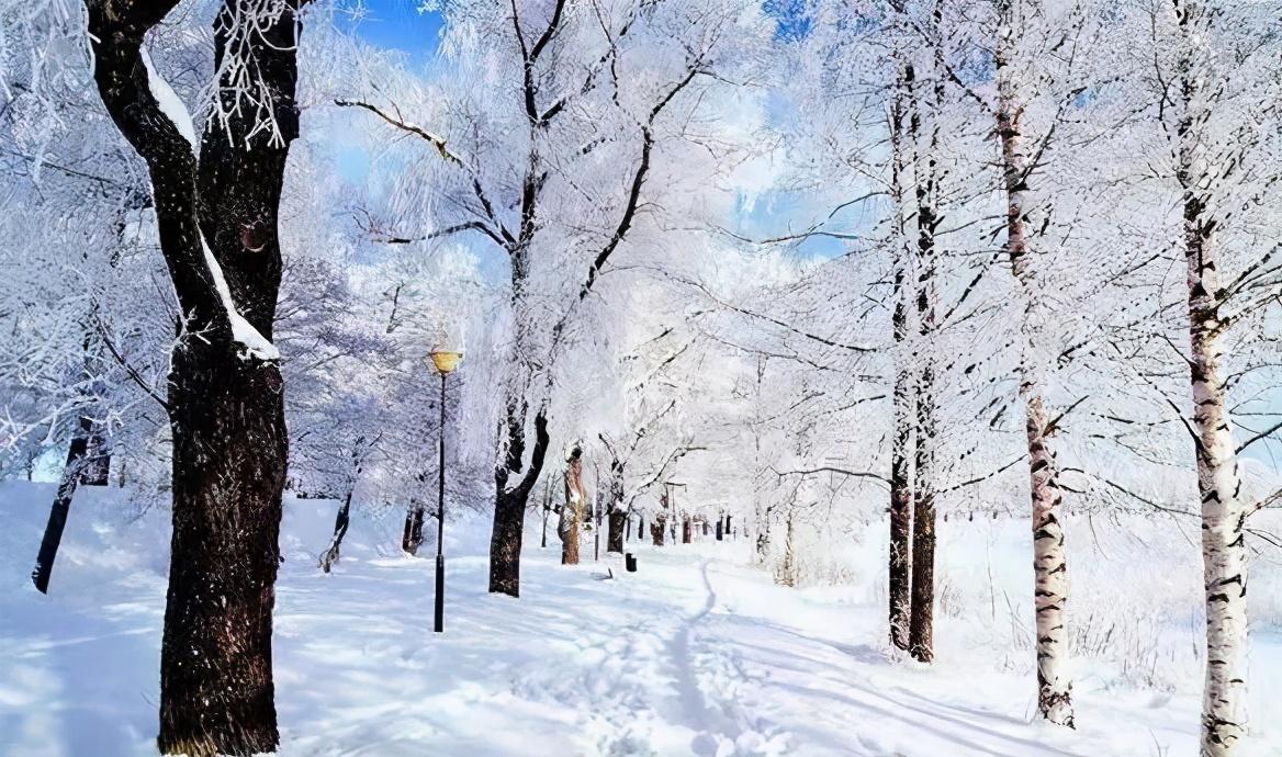 """今生,我愿为""""雪"""""""