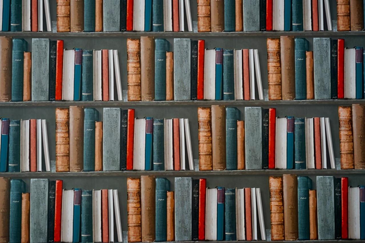 当我们都在追求效率的时候,我们忽略了什么?| 书籍推荐