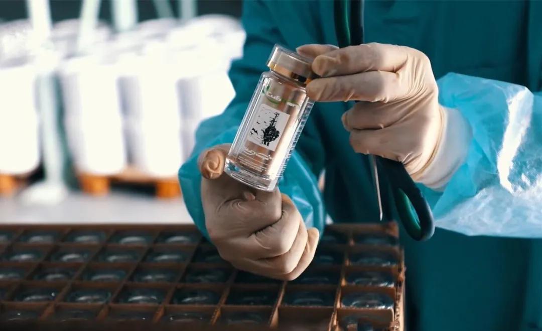 为啥首选超临界低温萃取工艺?白桦茸多糖提取方法大盘点