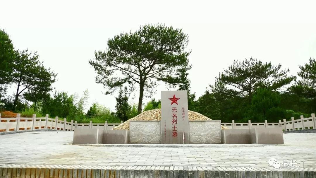 奋斗百年路 启航新征程丨经济日报:松毛岭上的红色传承