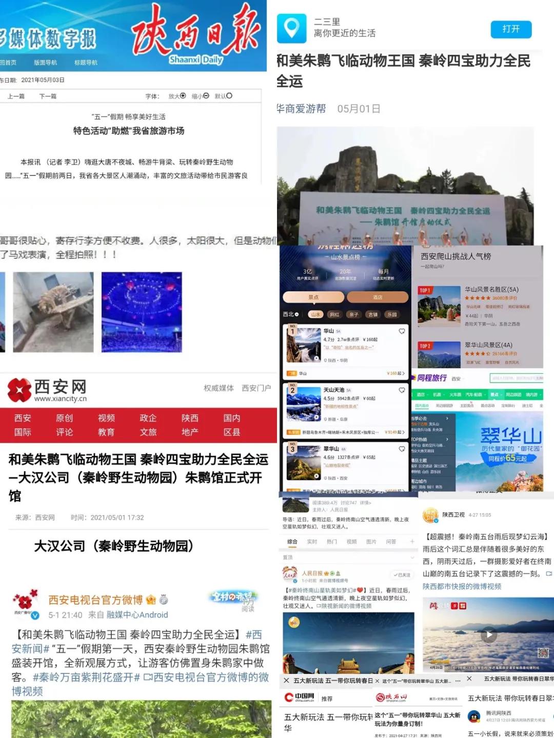"""46.5万+,五一假期,西旅集团C位强势""""出圈"""""""