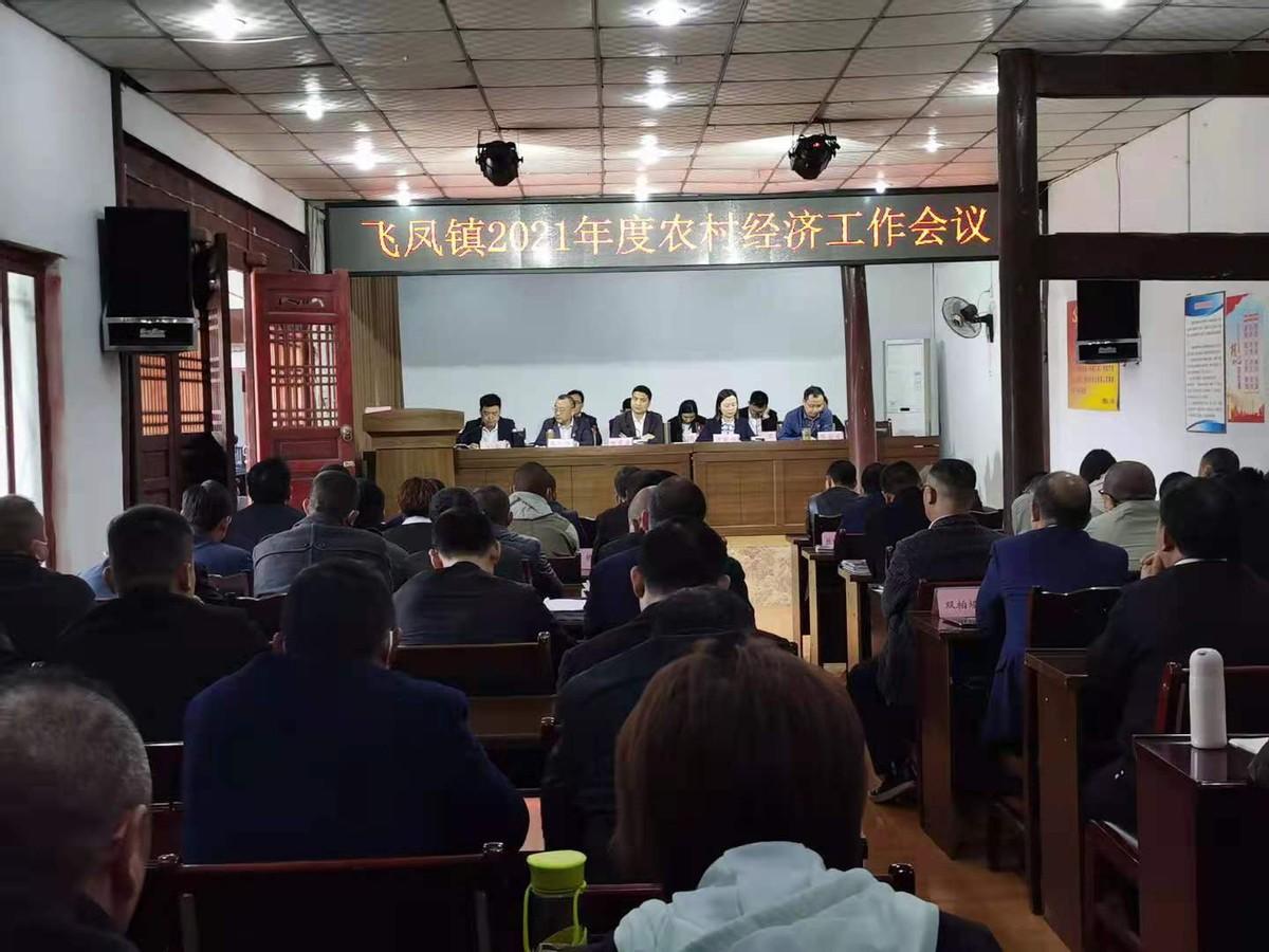 阆中市飞凤镇召开2021年农村经济工作会