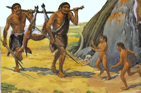 人类进化过程中,曾经存在过17个人种,为何后来只剩下智人?-第3张图片-IT新视野