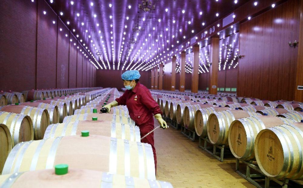 央视网评:葡萄酒产业大有前景