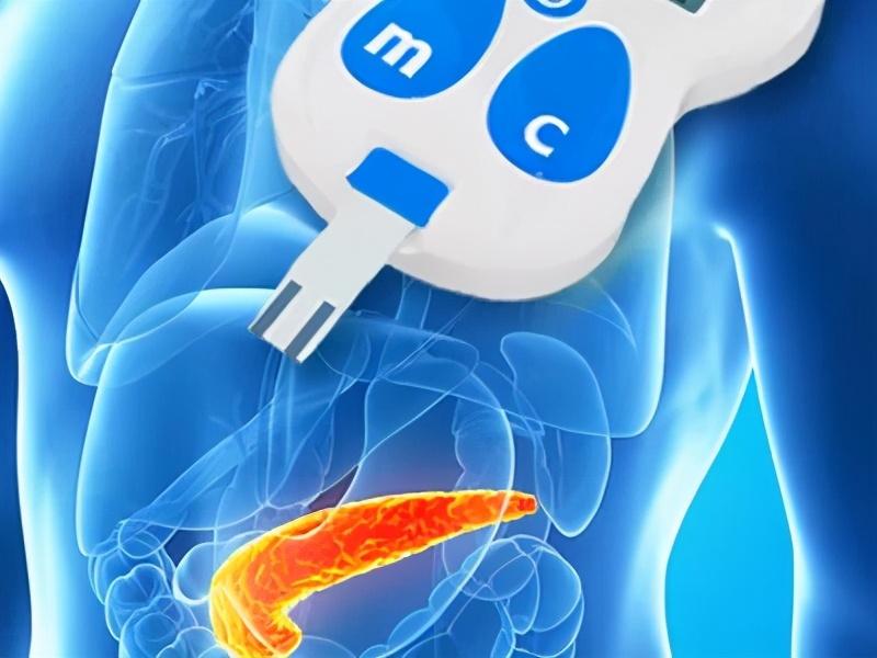 益生菌改善糖尿病的理論基礎和功效