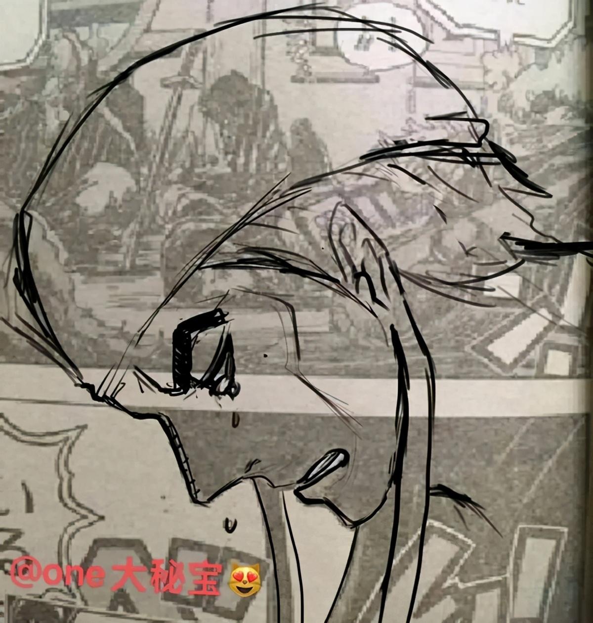 海賊王1004出現神秘人,剪影類似艾尼路!網友:可能是時夫人