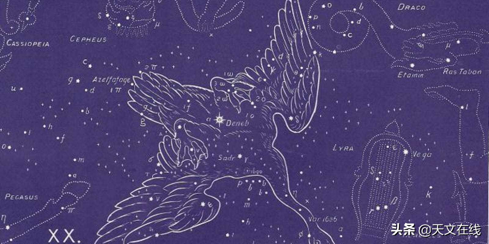 请定好您的闹钟,晚上!我们一起欣赏下天津四,它是天鹅座的尾巴