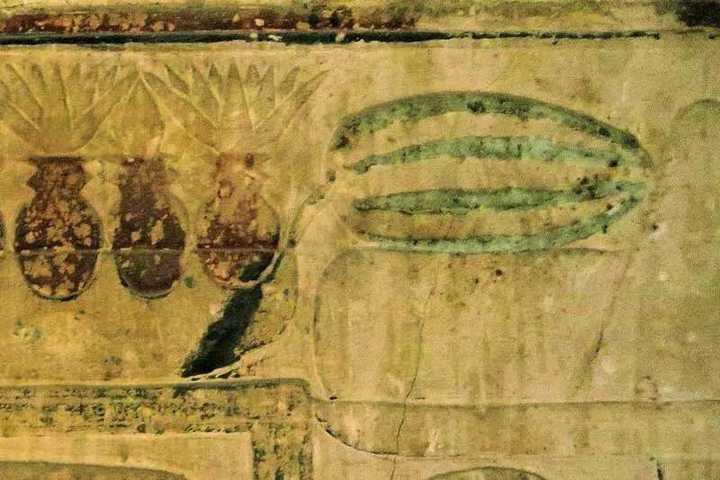 新研究称西瓜原产于非洲苏丹,最早的西瓜是啥样?何时传入我国的