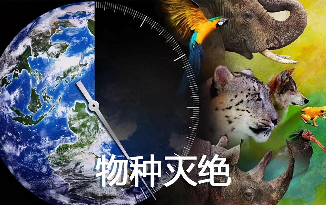 """2021年新疆生产建设兵团高校毕业生""""三支一扶""""计划招募公告"""