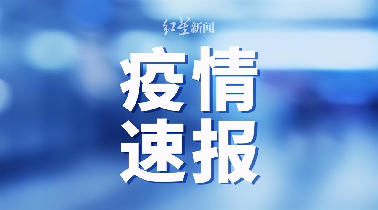 青岛卫健委:在青岛港大港公司发现2例新冠肺炎无症状感染者