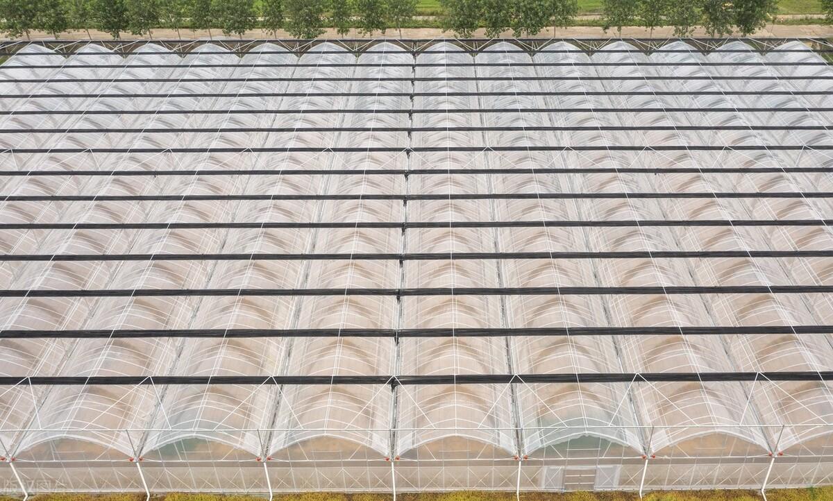 什么是智能化薄膜温室大棚