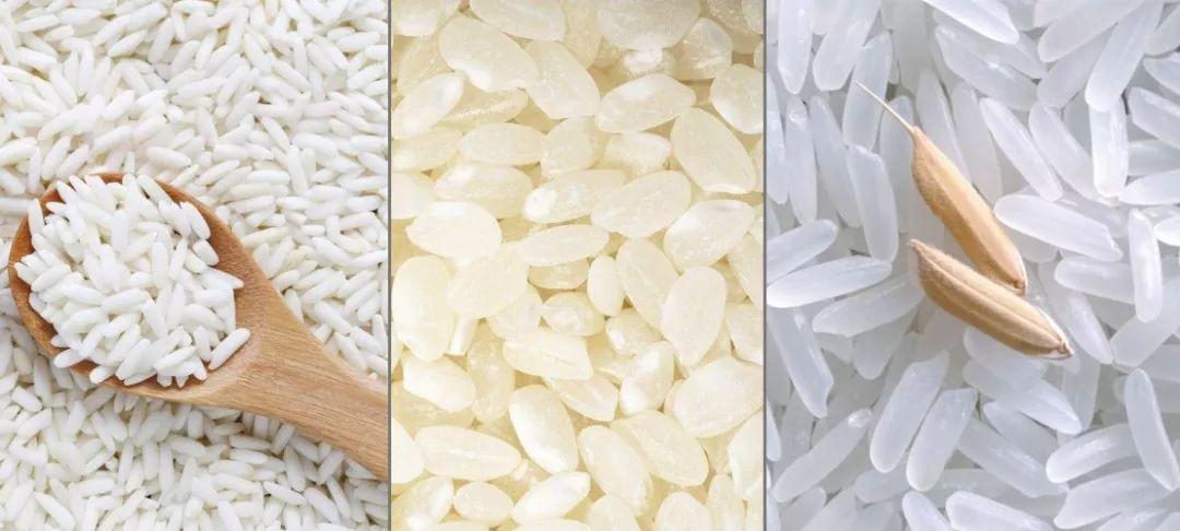 最晚的新米也上市啦!太湖边种了一辈子水稻的大伯见告你,甚么米好吃