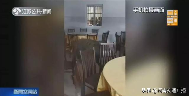 400斤野猪大闹餐厅,特警连开6枪击毙!网友:年货送上门?