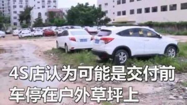 男子花30万买新车不料车内竟暗藏数个蚂蚁窝,维修5天还有蚂蚁