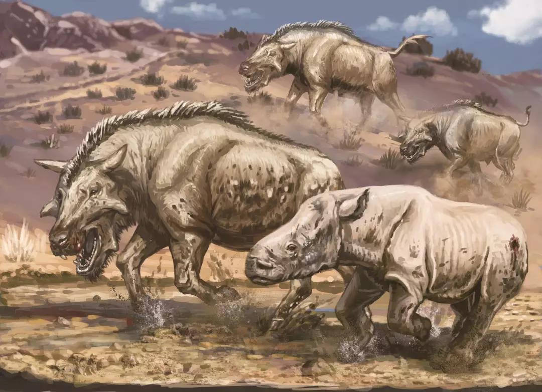 巨猪——史前大怪物